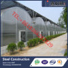 Best Selling Commercial Multi-Span Plastic Film Greenhouse for Vegetable Growing