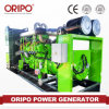 CE Approved 50Hz/60Hz 380V Cummins 500kw Natural Gas Generator