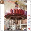 Zdy130-Lh-80 Type Kaplan Water Turbine Generator