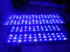 Salt Water High Power for Coral Reef 120cm LED Aquarium Lighting Lamp