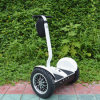 2 Wheel Electric Scooter or Electric Standing Bike, Self Balancing Electric Vehicle