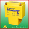 High Capacity Motor Battery 19ah 12V (KB16A)
