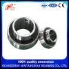 China Factory Pillow Block Bearing Uc212