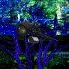 Outdoor Garden Laser Light Landscape Light