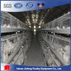 Farm Equipment for Poultry Chicken Farm Broiler Chicken Cage for Sale in Nigeria
