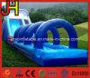 Giant Cheap Inflatable Water Slide for Amusement Park