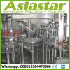 High Efficiency Fully Auto Rinsing Filling & Sealing Packing Machine