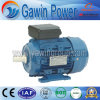 Good Quality My Series Single-Phase Capacitor-Run Induction Motor