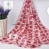 Sunscreen Voile Shawl Cute Kitty Printed Fashion Lady Scarf