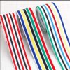 Fashion Webbing /Color Webbing /Color Elastic Webbing