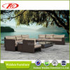 Sectional Sofa, Sofa Set, Sofa (DH-6631)