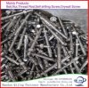 Stainless Steel 316 Anchor Bolt M8X100