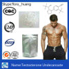 99% Purity Steroid Powder Male Hormone Testosterone Undecanoate