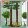 Good Quality Artificial Fan Palm for Home Decoration