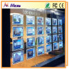 Advertising LED Acrylic Window Display with Light Panel