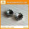 """Stainless Steel Competitive Price 18-8 1/4"""" Kep Nut"""
