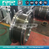 Biomass Pellet Plant Parts Ring Die