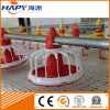 Automatic Poultry Feeder and Drinker Equipment