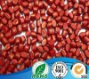 PE/PP/ABS Red Color Masterbatch Used for Plastic