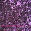 Velvet Curtain Fabric Shcl00189