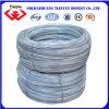 Electro Galvanized Wire (TYB-0076)