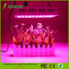 Full Spectrum High Power 300W 450W 600W 800W 900W 1000W 1200W 2000W Hydroponics LED Grow Light for Greenhouse Plants
