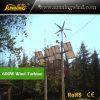Residential Wind Generator 600W Small Wind Turbine Motor Home Use