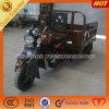 Cheap Low Price Mini Chopper Trike Motorcycle