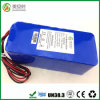 Professional Service Custom Lithium Ion Battery