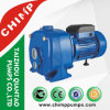 Double Ejector Self-Priming Centrifugal Pumps for Deep Wells