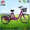 250W Lithium Battery Three Wheel Bicycle Electric Tricycle