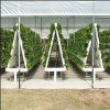 Top Commercial Hydroponics Greenhouse for Agricultural Greenhouse