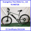 Electric Mountain Bike/Mountain E-Bike