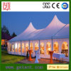 High Peak Cumtomized Multi-Side Tent with Colorful PVC Roof Cover