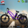 Fat Tire Electric Beach Tricycle with Front Suspension