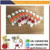 Bodybuilding Drug Human Peptides White Lyophilized Powder Cjc-1295 with Dac