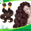 Silk 7A Loose Wave Malaysian Human Natural Hair