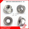 China Fastener M3-M80 Zinc Plated Carbon Steel Flange Nut