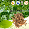 Top Grade Natural Herb Medicine Mulberry Bark