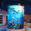 Curved Glass Aquarium