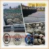 High Quality Hot Dipped Galvanized Gabion Box/Stone Gabion/PVC Coated Gabion Wire
