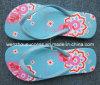 Beach Flip Flop Slippers (Ss14-8s055)