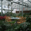 Hot Sale Eco Agriculture Sightseeing Greenhouse From China Supplier