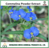 High Quality Herbal Dayflower Commelina Communis Powder Extract for Removing Edema