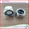 DIN985 982 Blue White Ring Unichrome Zinc Plating Nylon Insert Lock Nuts
