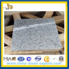 G623 Granite Rosa Beta (YQA-GT1025)