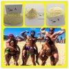 Yellow Trenbolone Acetate Powder Tren Acetate Weight Loss Steroid