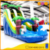 Coco Inflatable Froest Water Park Slide (AQ1072)