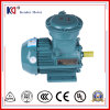 YB3 Series Explosion Proof Three Phase Induction Motor
