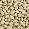 China Fresh Blanched Peanut Kernels